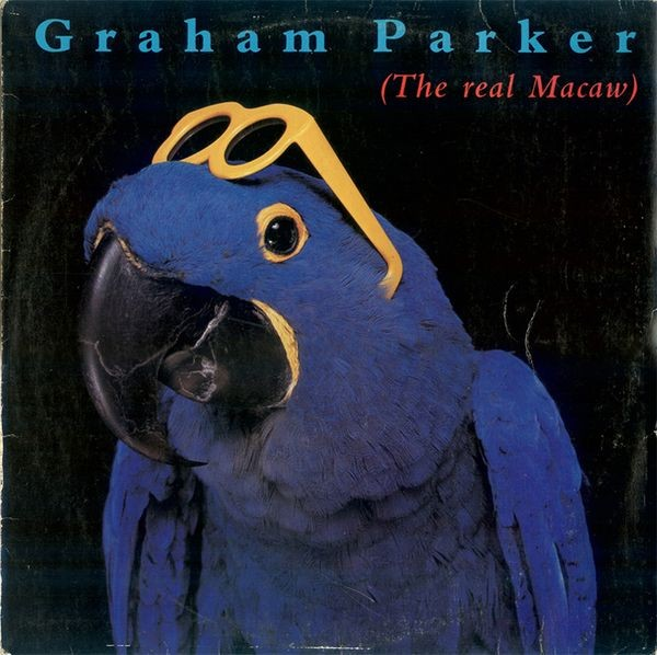 Parker Graham - The Real Macaw