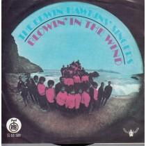 Edwin Hawkins Singers - Blowin In The Wind/listen To The Rain