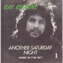 Stevens Cat - Another Saturday Night/home In The Sky