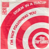 Fortunes - Storm In A Teacup/im Not Following You