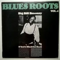 Broonzy Big Bill - Blues Roots Vol 4 - If Youre Black Get Back