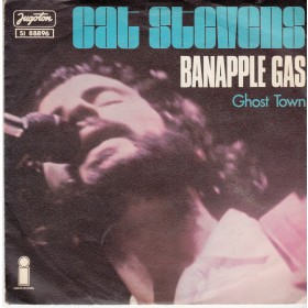 Stevens Cat - Banapple Gas/ghost Town